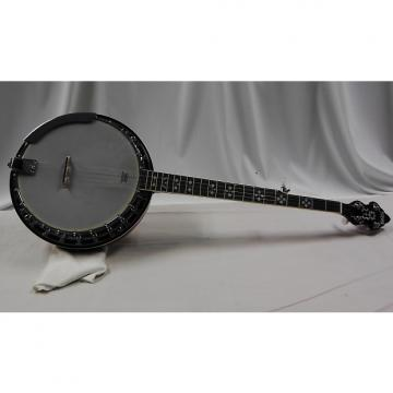 Custom Recording King RK-R20 Banjo