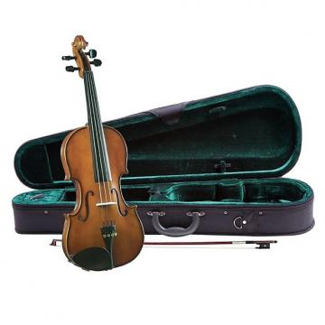 Custom Francesco Cervini Labeled Francesco Cervini 4/4 SV-2 with Case and Bow Professionally Setup