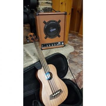 Custom Kala Ubass & Pignose Hog 30 Mahogany and 30 Watt 2012