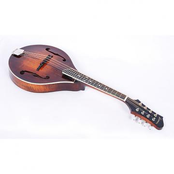 Custom Eastman MD505 A-Style Full Gloss Hand Carved Mandolin With Case