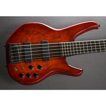 Custom Status Empathy 5 String Bass 2004 Cherry Sunburst