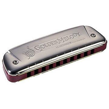 Custom Hohner Progressive Series 542 Golden Melody Harmonica Key of C