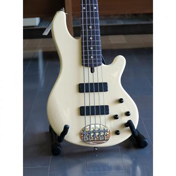 Custom Lakland 5501 2017 Vintage Cream (Includes Pro Go Gig Bag-$150 value)