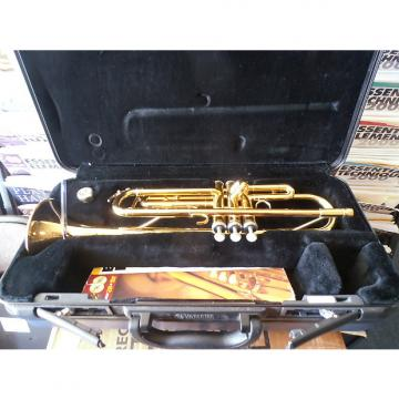 Custom Yamaha ytr 200 ad Trumpet with case