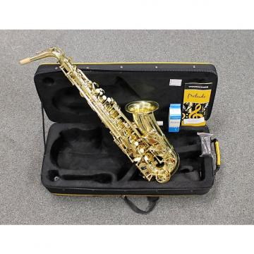 Custom Selmer Prelude Alto Saxophone AS711 Outfit