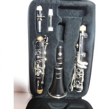 Custom Selmer B16 Presence Professional Clarinet