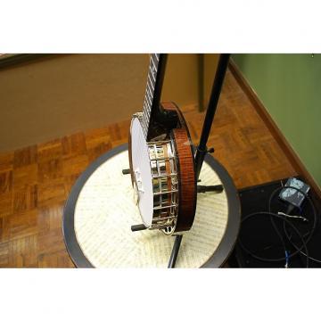 Custom Nechville Flex-Tone Banjo