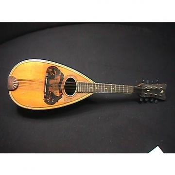 Custom Antique Supertone Bow Back or Gord Back Mandolin with a Butterfly inlay  sold in as-is condition