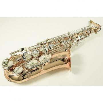Custom IO AS-1065GLS Alto Saxophone
