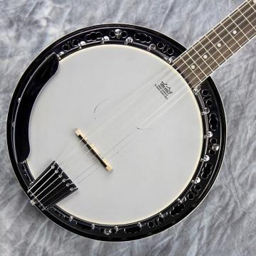 Custom Fender Rustler 6, 6-String Banjo, Banjitar, Perfect For A Guitarist