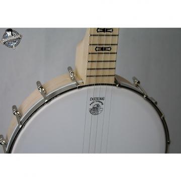 Custom Deering Goodtime Banjo