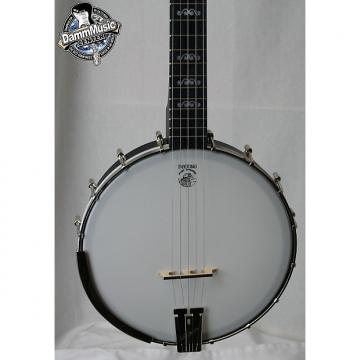 Custom Deering Artisan Goodtime Banjo