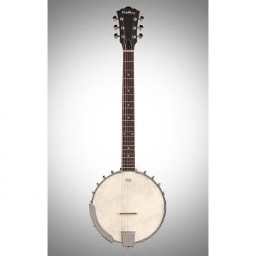 Custom Washburn B6 Six String Banjo -Open Backfw