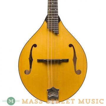 Custom Collings Mandolins - MT GT - Honey Amber