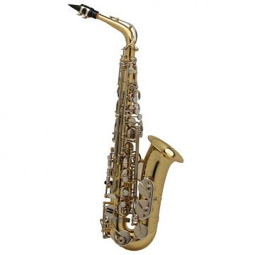 Custom Antigua AS100 Alto Saxophone