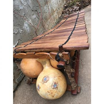 Custom Balafon from Burkina Faso with custom gig bag