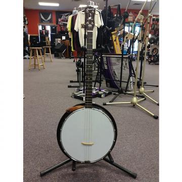 Custom Harmony Tenor Banjo 1970