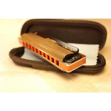 Custom Professional custom Easttop/ Ermonica harmonica T008K Black. Key Bb.