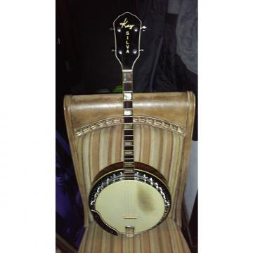 Custom 1959 Kay Jose Silva tenor banjo