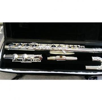 Custom Amadeus AF570C Alto Flute with Curved head joint.