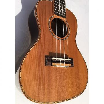 "Custom Grape GKC-A9 24"" Ukulele"