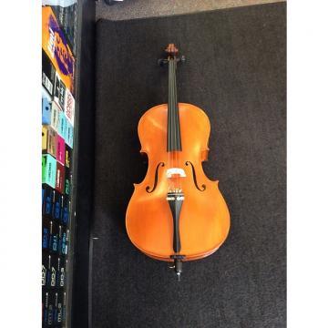 Custom Euro Antique 1/2 Size Cello W/Bag & Glasser Bow