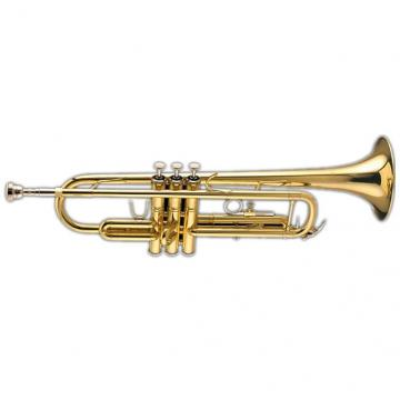 Custom Bach Student Trumpet TR305BP w/ Case