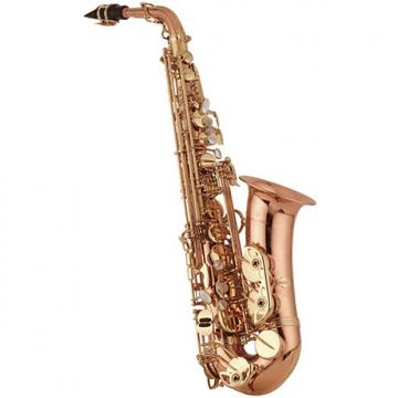 Custom Yanagisawa AWO20 Professional Bronze Alto Sax (A-WO20)