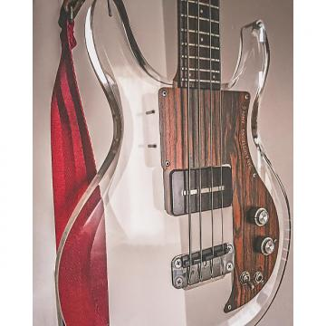 Custom Ampeg Dan Armstrong Lucite Bass 1971 Clear Lucite