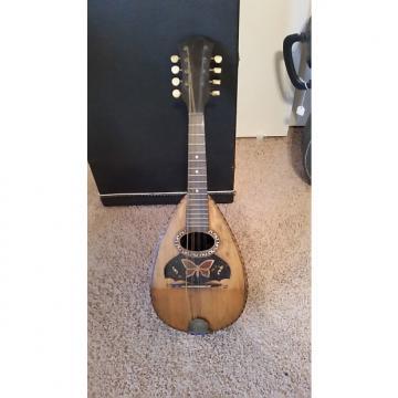 Custom Early 1900s Italian style mandolin late1800s-early1900s