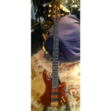 Custom Schecter Stiletto Studio 5 string bass