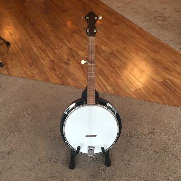 Custom Sundlof Engineering Prototype 5-string Tenor Banjo