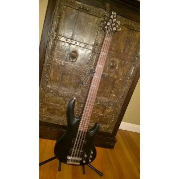 Custom ESP LTD FB-208 8-String Frank Bello Signature Electric Bass Guitar - Black Satin Finish (LFB208BLKS) FB-208