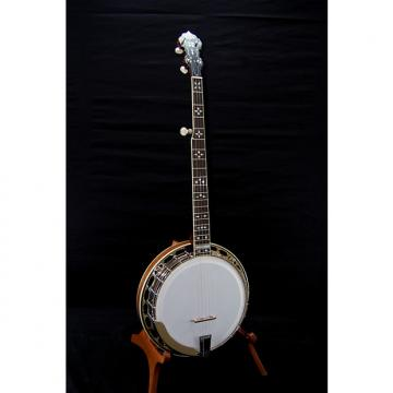 Custom Hopkins Mahogany Arch Top Banjo - Very Nice!