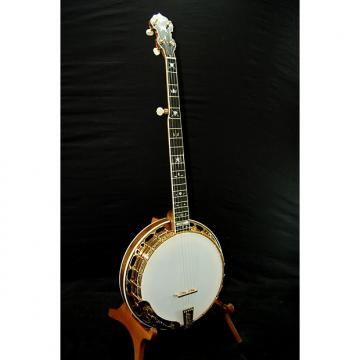 Custom Hopkins Renaissance Gold Banjo - Beautiful!