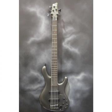 Custom Ibanez Ergodyne 5 String Bass