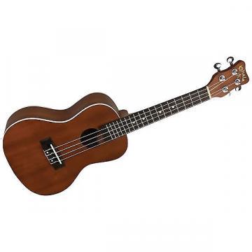 Custom Kohala AKC concert ukulele
