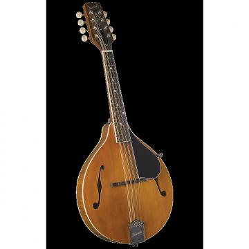 Custom Kentucky KM-252 Artist A-model Mandolin - Gigbag
