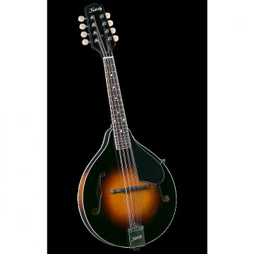 Custom Kentucky KM-140 Mandolin - Hardshell Case