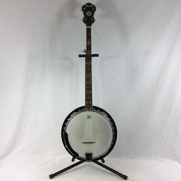 Custom Fender Banjo 5-String