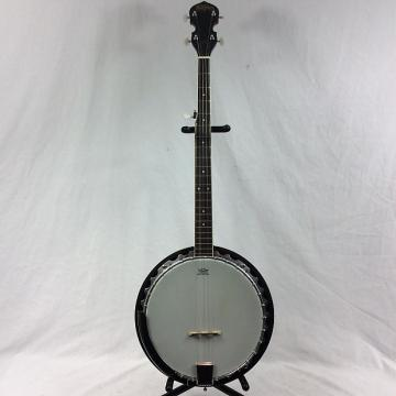Custom Washburn 5-String Banjo