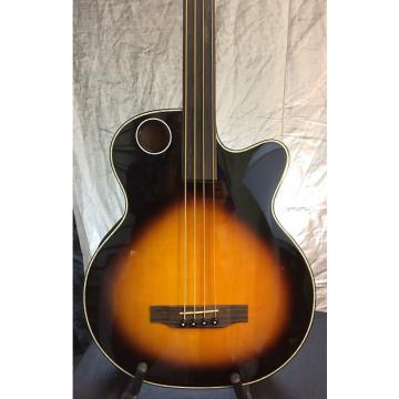 Custom Boulder Creek EBR1-TB4FE Solid Spruce Top Acoustic Electric Fretless Bass -Hardshell-$95 w/purchase