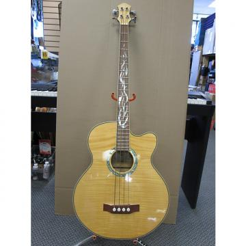Custom Michael Kelly Phoenix 4 string Acoustic Bass Guitar Used
