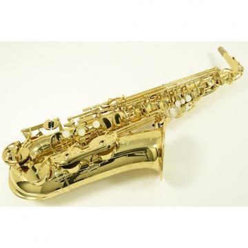 Custom Yamaha YAS-480 Alto Saxophone
