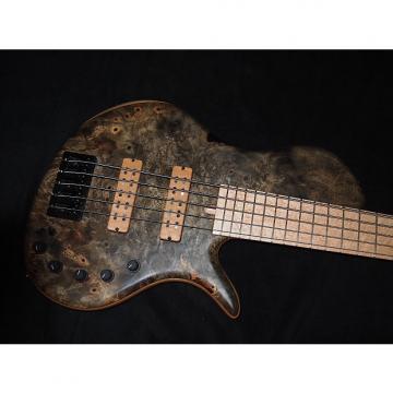 Custom Elrick Single Cut 5 String Electric Bass (Buckeye Burl)
