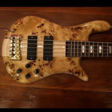 Custom Spector 5 string Bass Poplar Burl Poplar Burl