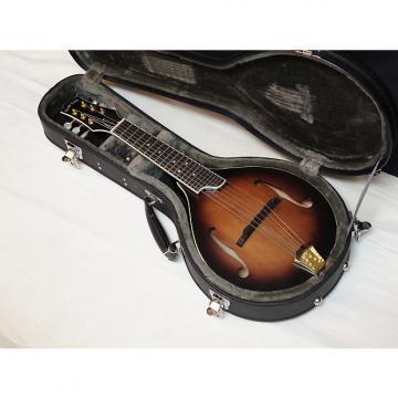 Custom GOLD TONE GM-6+ 6-string electric guitar MANDOLIN new w/ HARD CASE