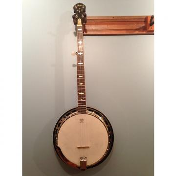 Custom Iida  5 string resonator banjo 1970s