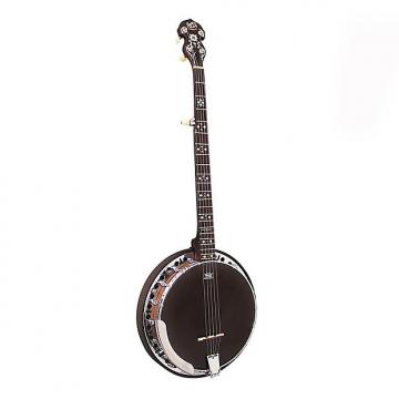 Custom B&M BJ400 Banjo 5 String rathbone