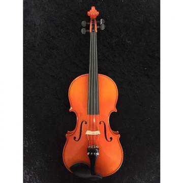 """Custom Lidl 16 1/2"""" Viola"""